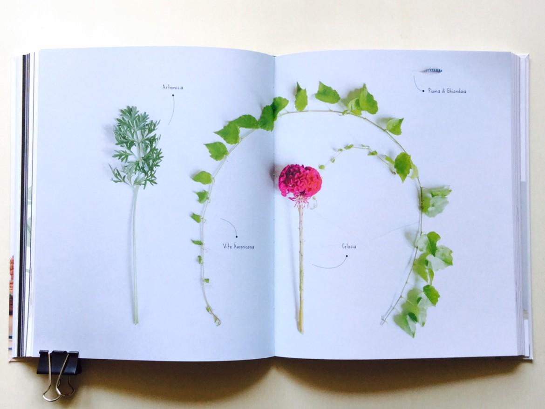 Fatti il mazzo istruzioni e ispirazioni per fioristi in for Libri per fioristi